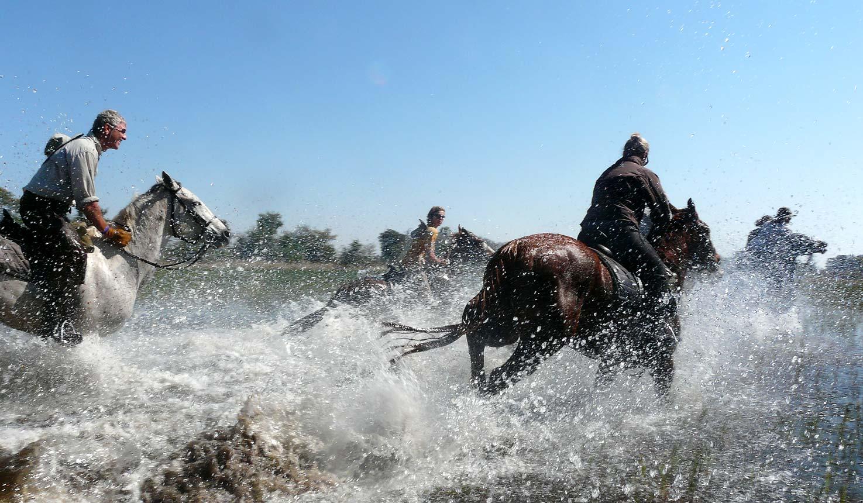 Safari à cheval au Botswana - galop dans l'eau