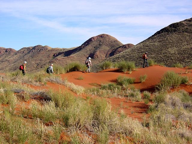 Trek dans le désert namibien - Tok Tokkie trails