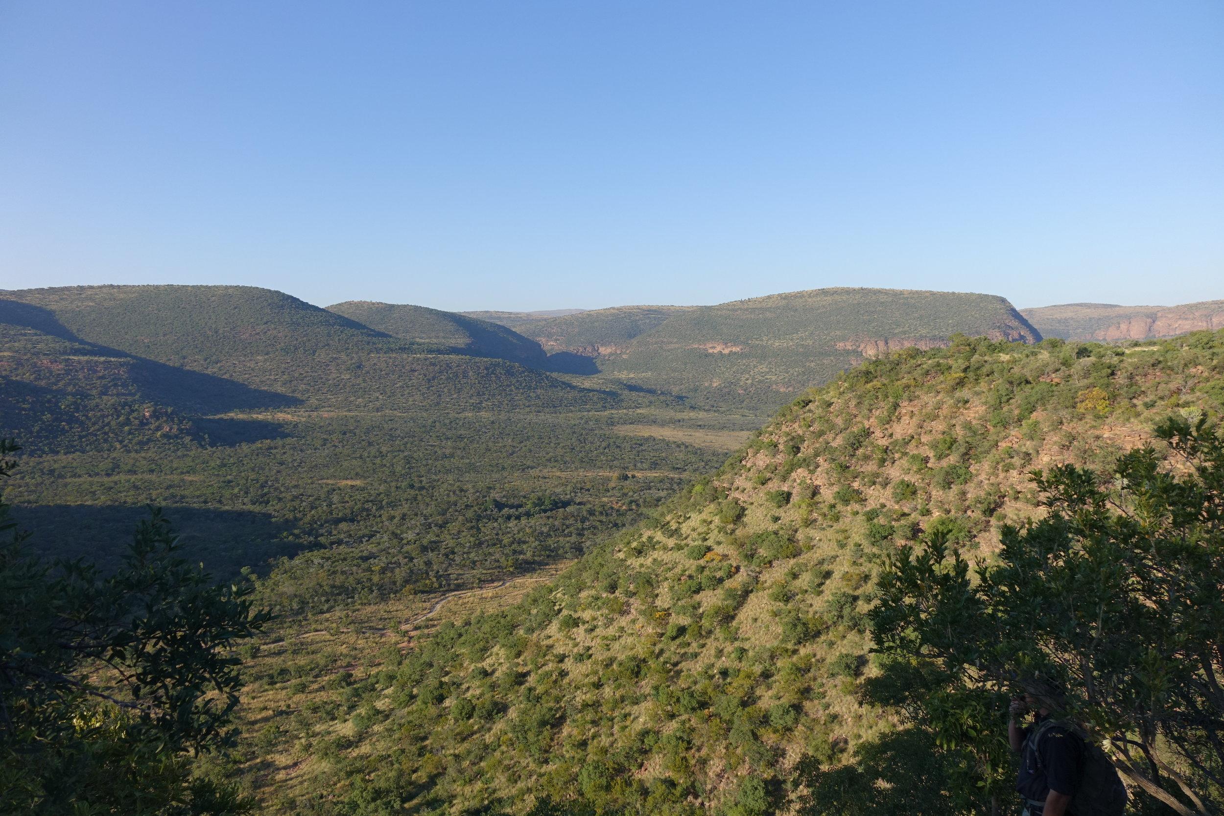 Safaris à pied ambiance Jurassique Parc - paysage de Marataba