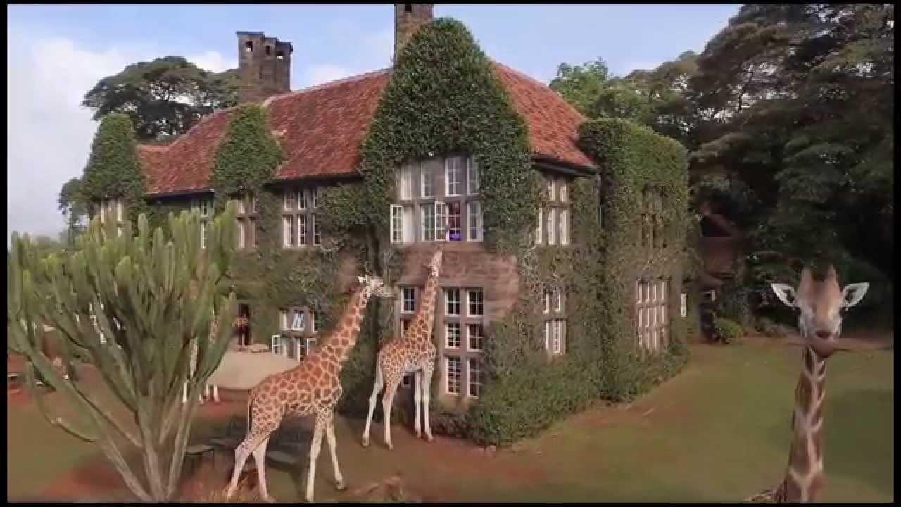 Voyage de noces Migration et Seychelles - vue du Giraffe Manor