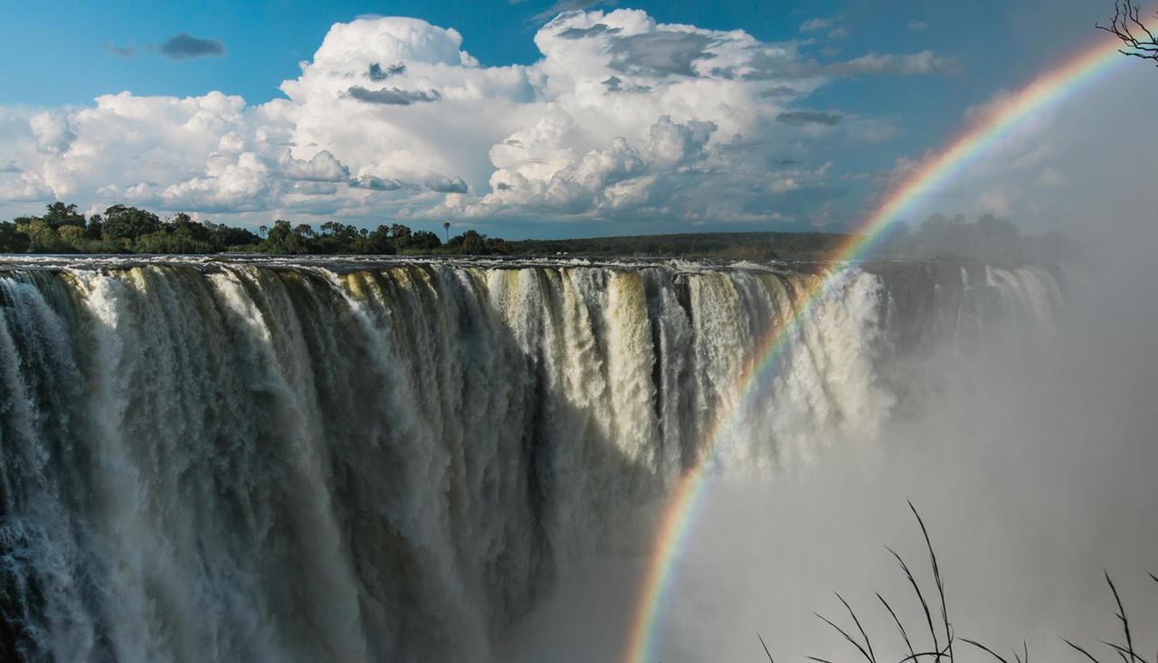 Safari Au Milieu des Eléphants - chutes Victoria