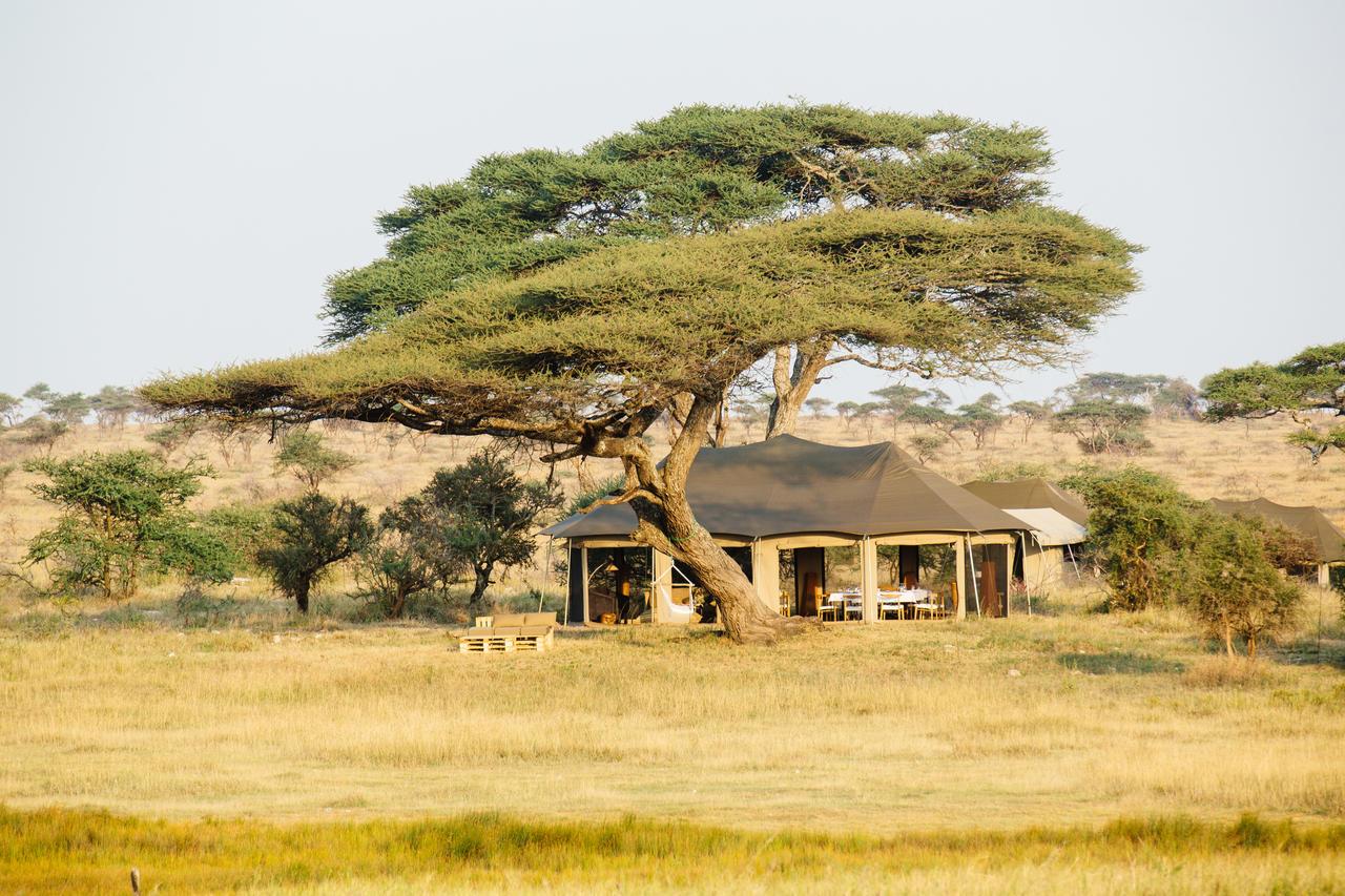 Vue de Namiri Plains