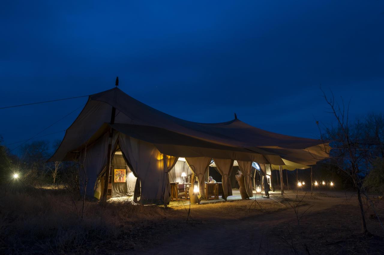 Safari 100% félins en Tanzanie - Kwihala de nuit