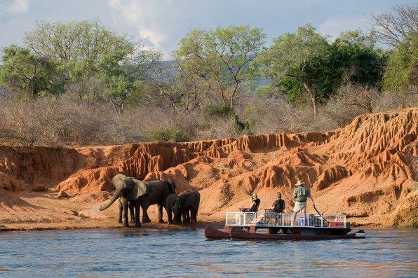 Safari en bateau à Chongwe River House