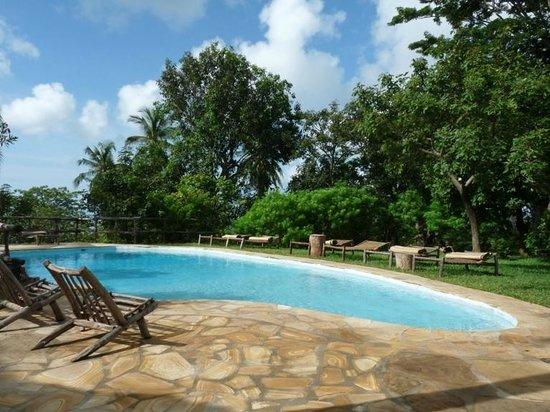 Shamba Kilole Eco lodge4.jpg