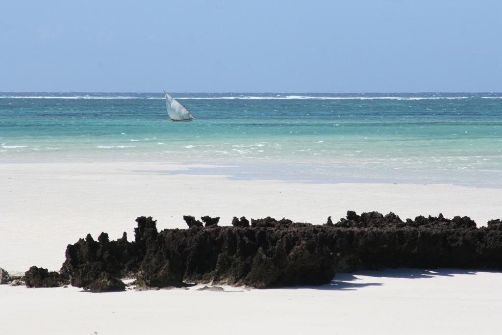 Vue de l'ocean du Coral lodge.jpg