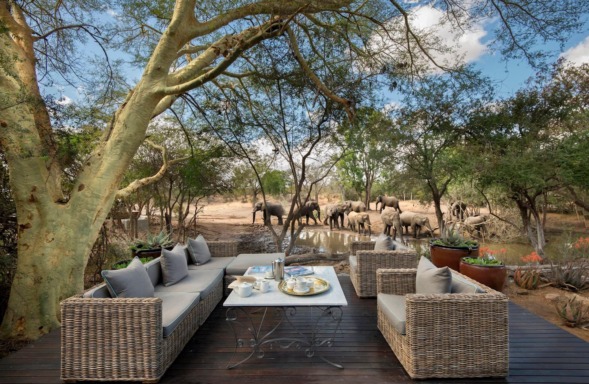 andBeyond-ngala-safari-lodge-exterior-deck-guest-areas-01.jpeg