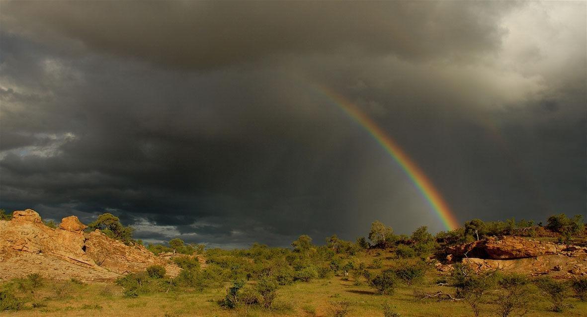 Paysage au Tuli Safari lodge.jpeg
