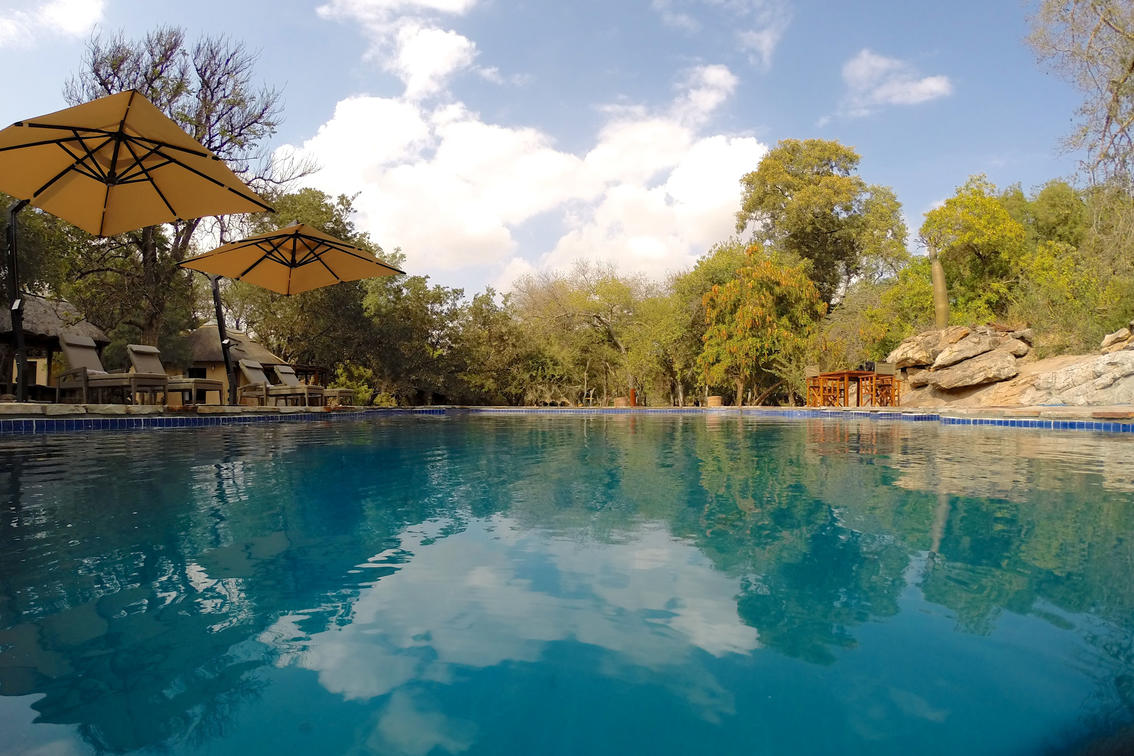 Piscine du Tuli Safari lodge.jpg