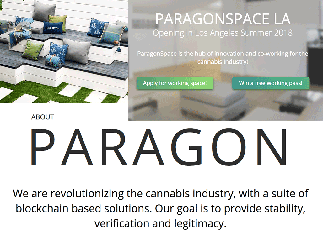 paragon-collage.png