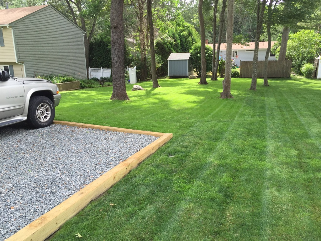 After lawn renovation