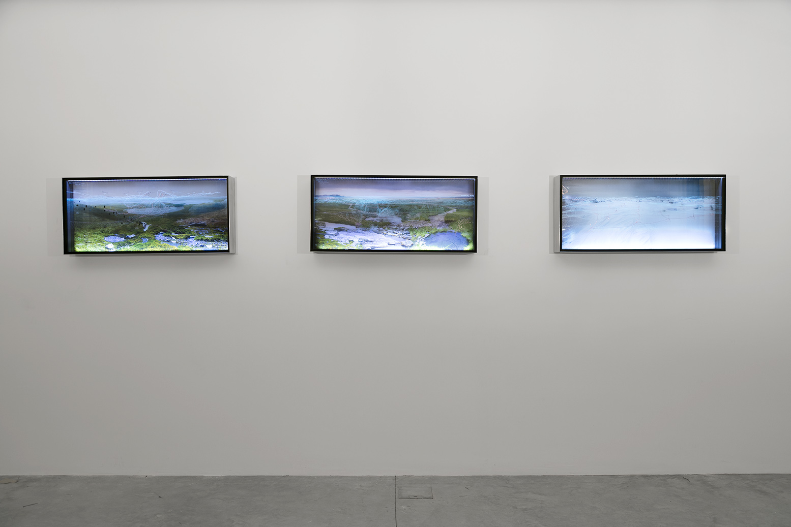 Landscapes of Plausible Uncertainty, 2012