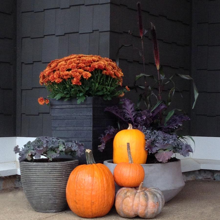 Seasonal Plantings Indianapolis