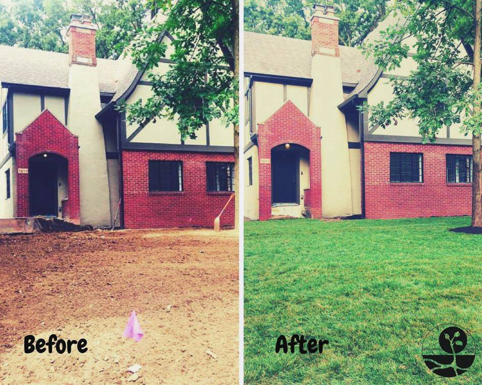 sod before and after indianapolis