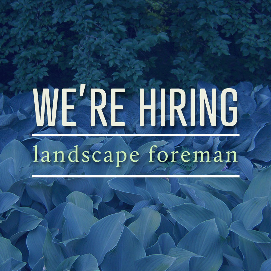Indianapolis Lawn Care and Landscape Design