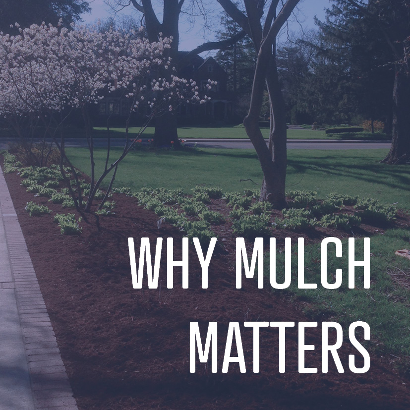 04-15-16 why mulch matters.jpg