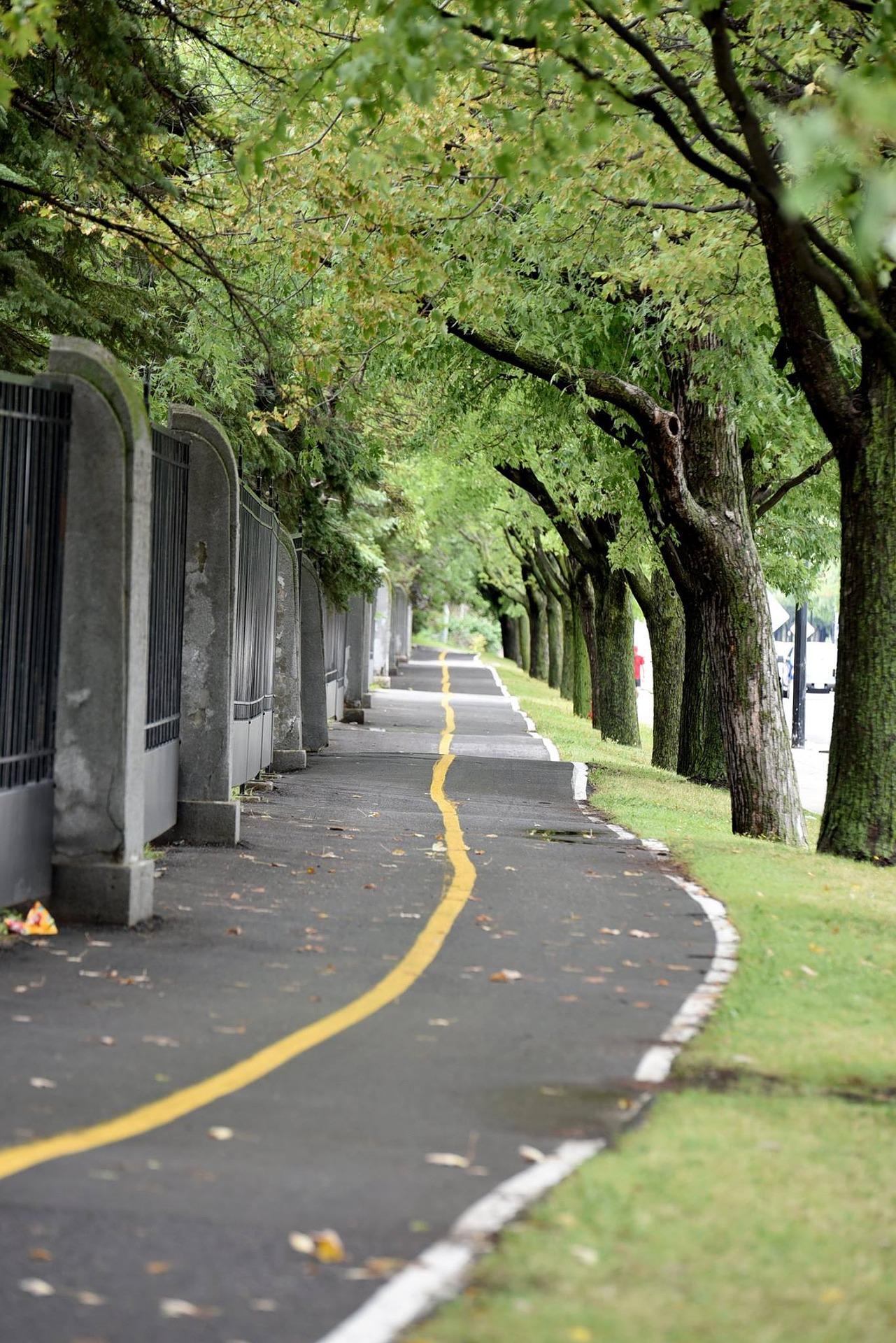bicycle-path-2770434_1920.jpg