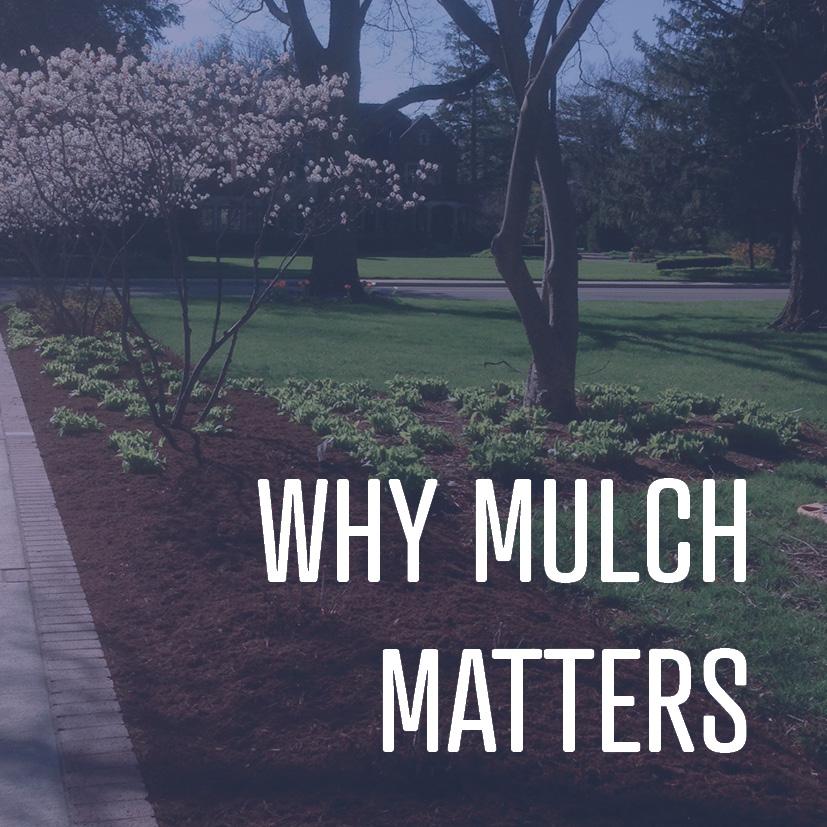 04-15-16 why mulch matters.jpg