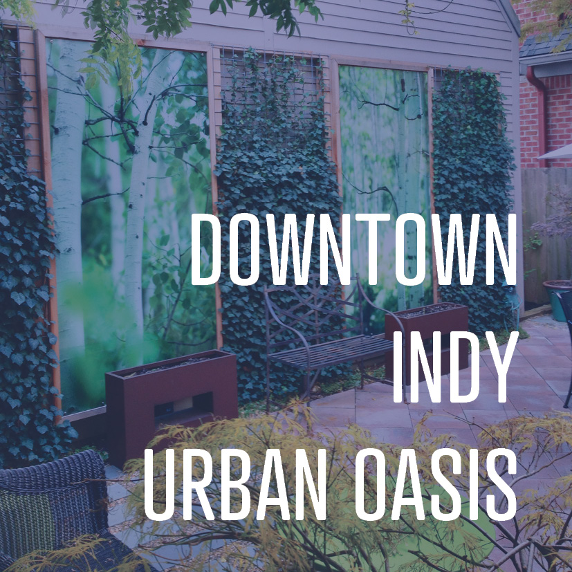 09-05-16 Project feature downtown urban oasis 2.jpg