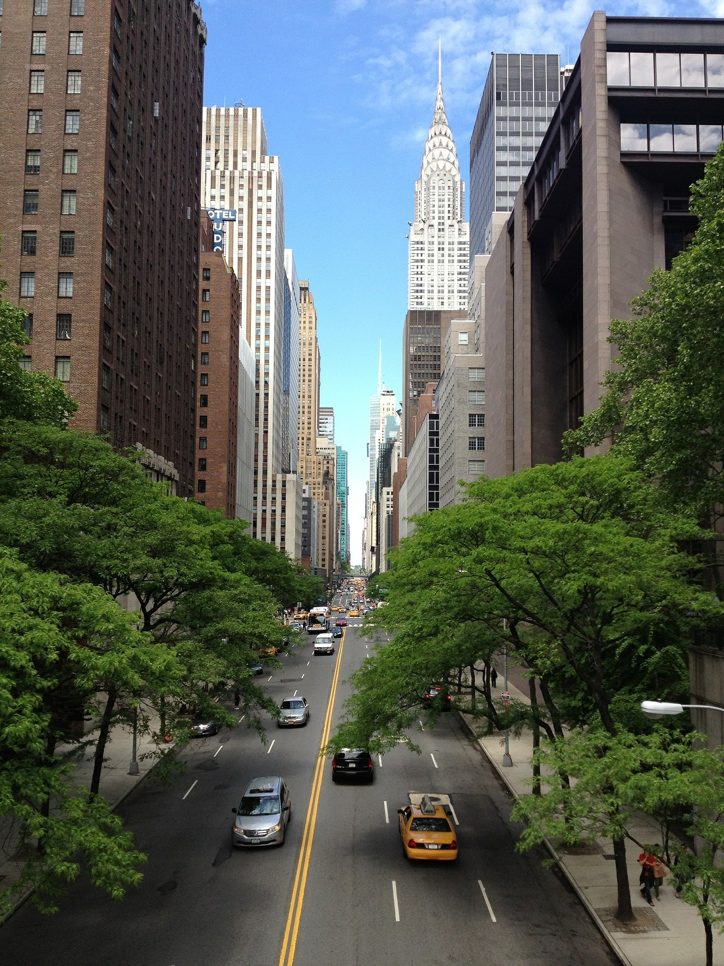 Street trees in NYC Photo retrieved from Pixabay