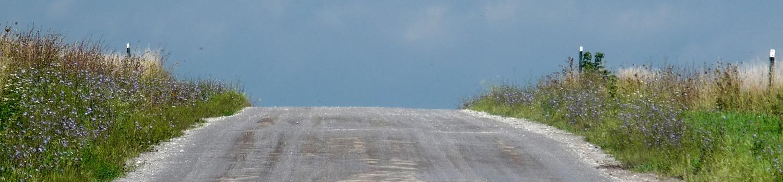 spring road crest - 1.jpg