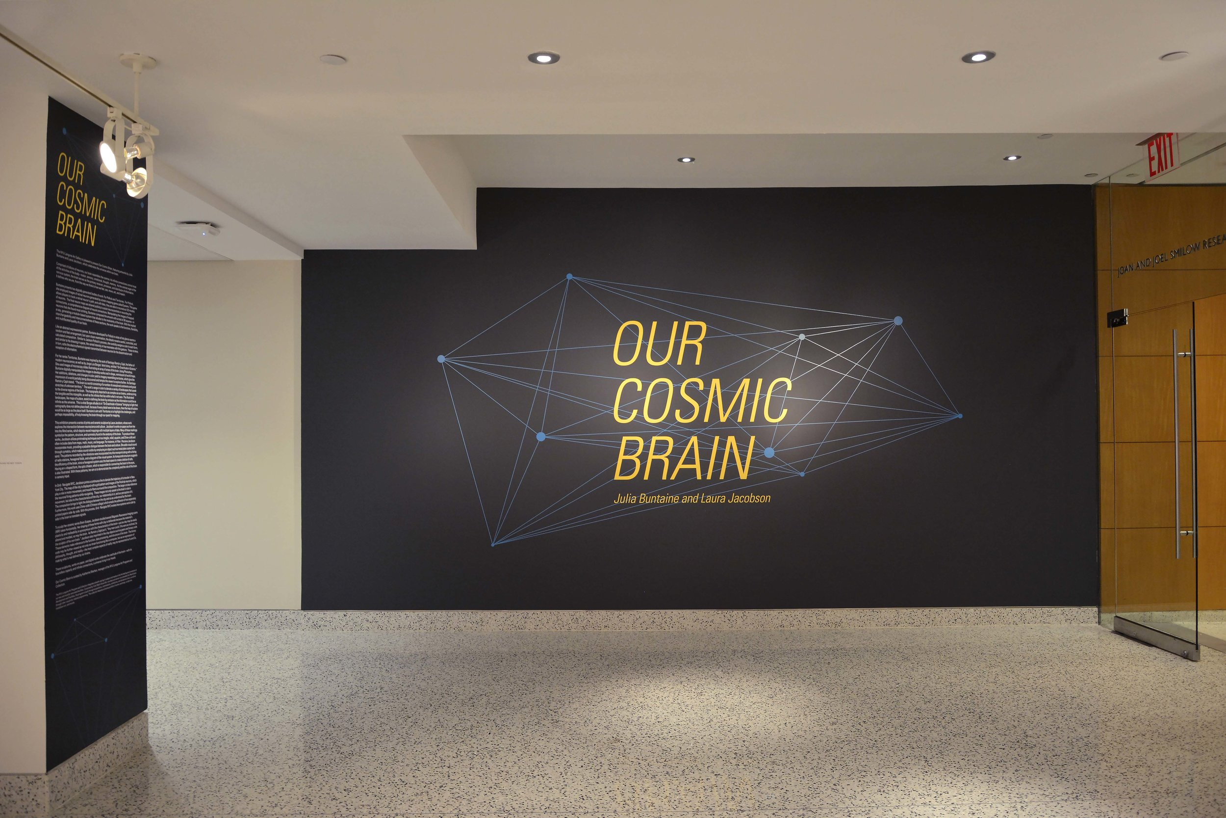 Our Cosmic Brain - web (1).jpg