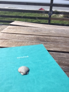 A pilgrim shell and journey notes.