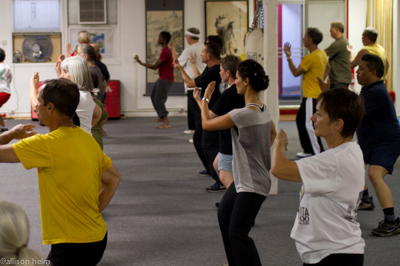 Overview of Classes — Taoist Sanctuary of San Diego