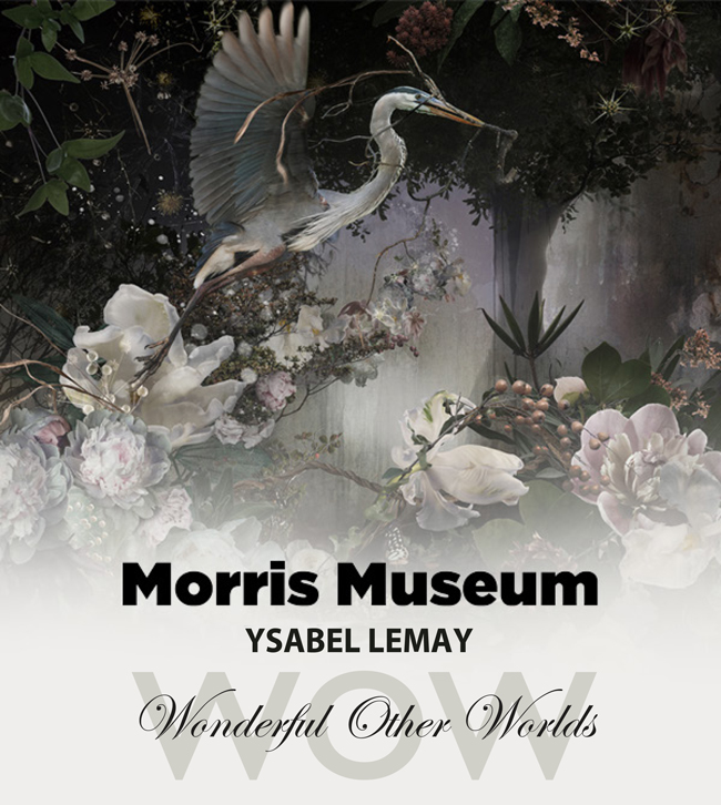 WOW - Opening: September 17Exhibition: September 17 - December 3, 2017Location: Morris Museum,6 Normandy Heights Road, Morristown, New Jersey 07960WOW displays LeMay's dedication to the land and the endless beauty it evokes. LeMay's composite landscapes are so vividly realized that one feels drawn not just to view but to step into them.
