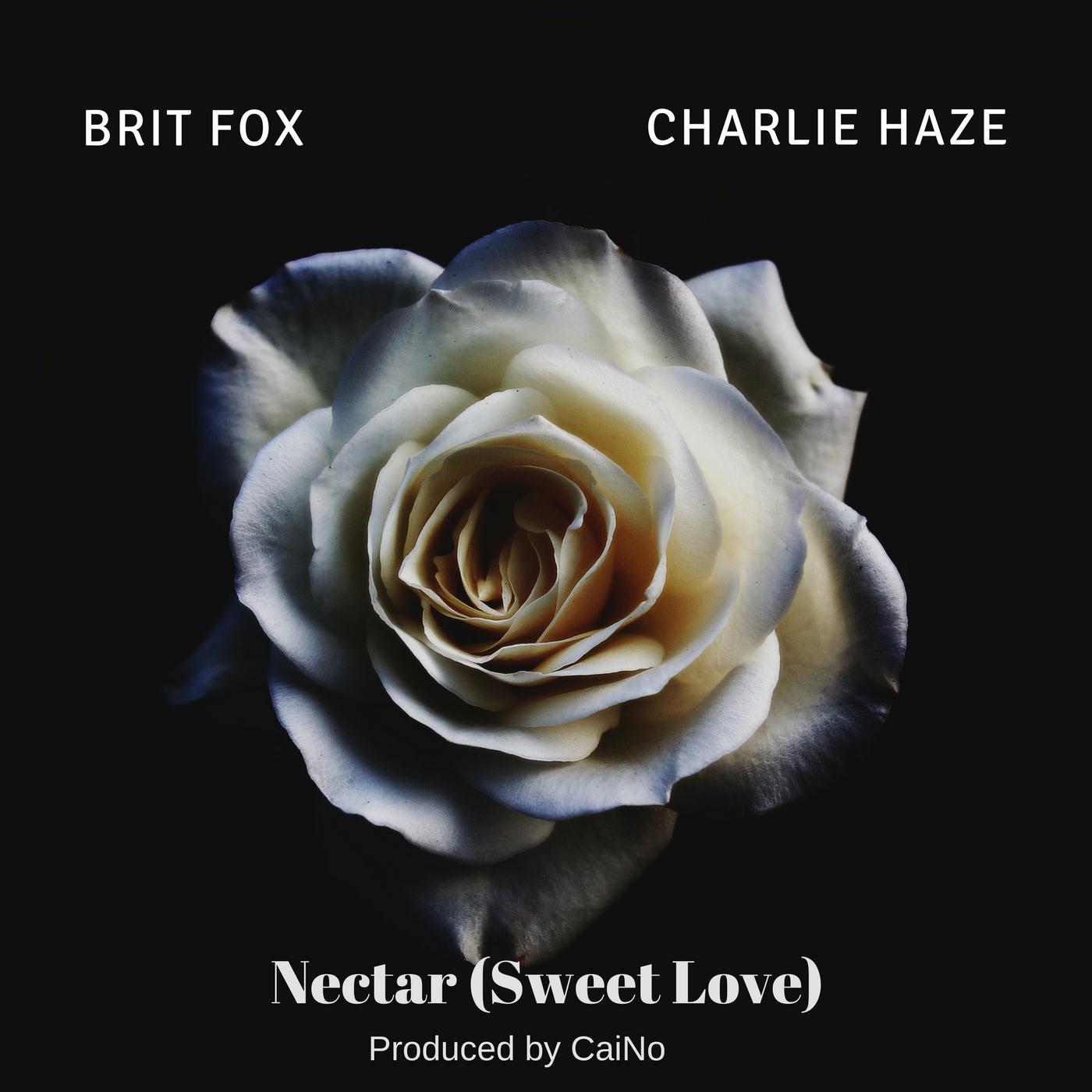 Marcus Cohen - nectar artwork.jpg