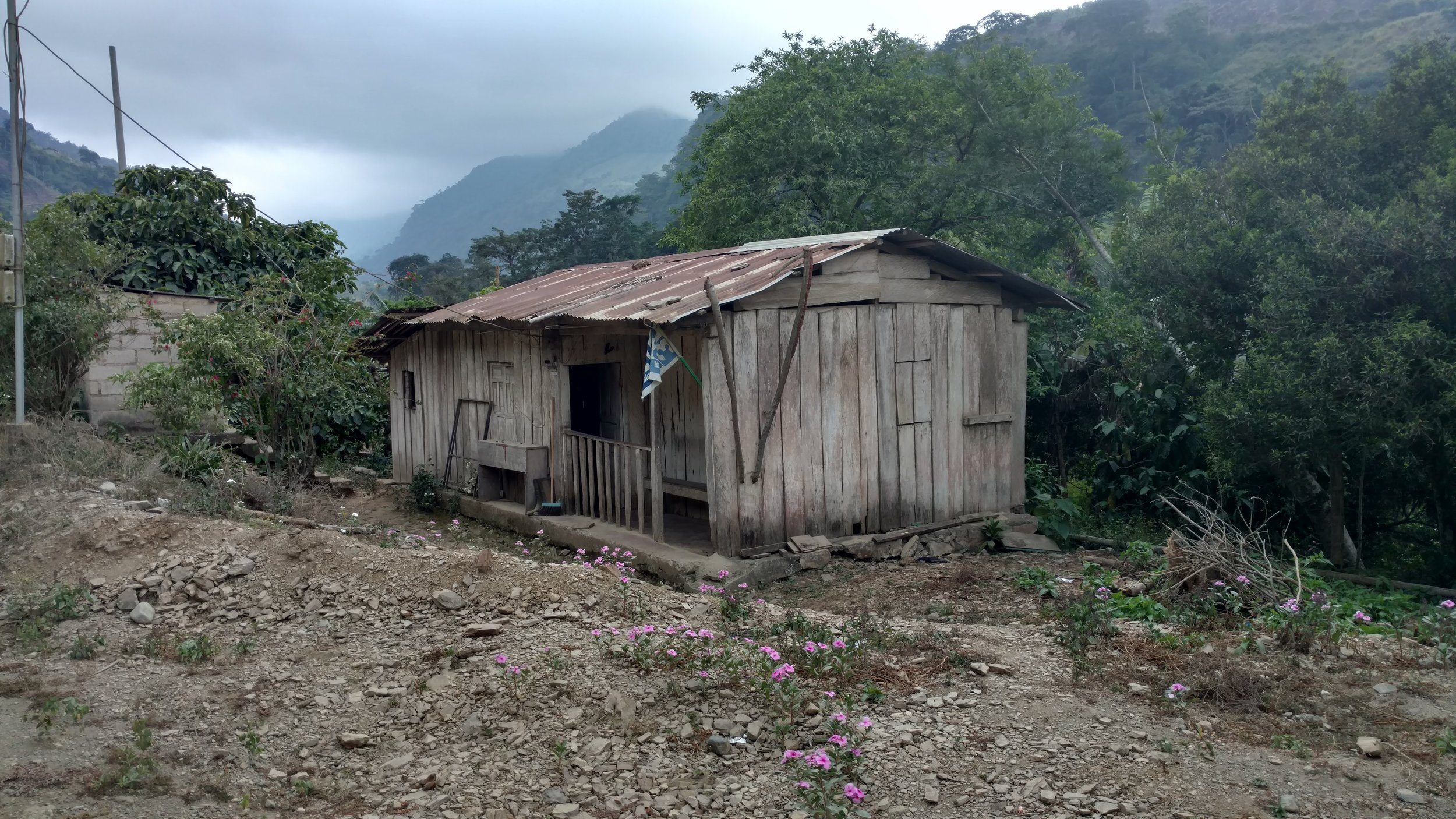 Marta's house in disrepair