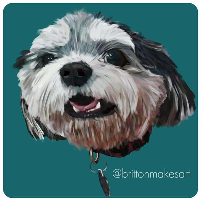It's Shelby! Another 4ft x 4ft for @waggeyland . . .  #brittonmakesart #illustration #painting #2dillustration #krita #photoshop #wacom #art #drawing #handmade #illustrationart #artinsta #artwork #draw #conceptart #digitalpainting #canvas #dogportrait #petportrait #waggeyland #portrait #dog #doge #doggo #commission #color #flynnthebulldog #dogs #sketch #paint