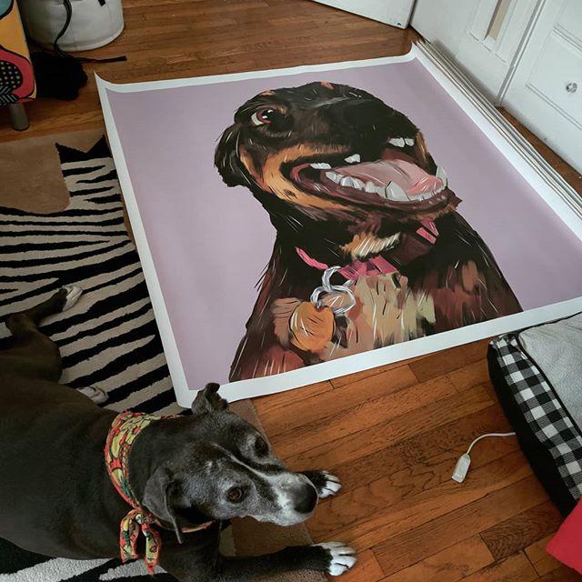 Just got 8 more paintings from the printer. 4ft x 4ft #cuyahogathedog is not a fan . . . .  #brittonmakesart #illustration #painting #2dillustration #krita #photoshop #wacom #art #drawing #handmade #illustrationart #artinsta #artwork #draw #conceptart #digitalpainting #canvas #dogportrait #petportrait #waggeyland #portrait #dog  #doggo #commission #color #flynnthebulldog #dogs #sketch #paint