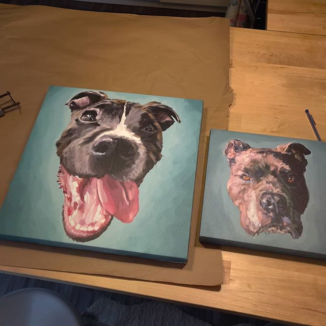 "Framing up a couple handsome doggos this weekend! 18""x18"" and 12""x12"" . . . .  #brittonmakesart #illustration #painting #2dillustration #krita #photoshop #wacom #art #drawing #handmade #illustrationart #artinsta #artwork #draw #conceptart #digitalpainting #canvas #dogportrait #petportrait #waggeyland #portrait #dog #doge #doggo #commission #color #flynnthebulldog #dogs #sketch #paint"