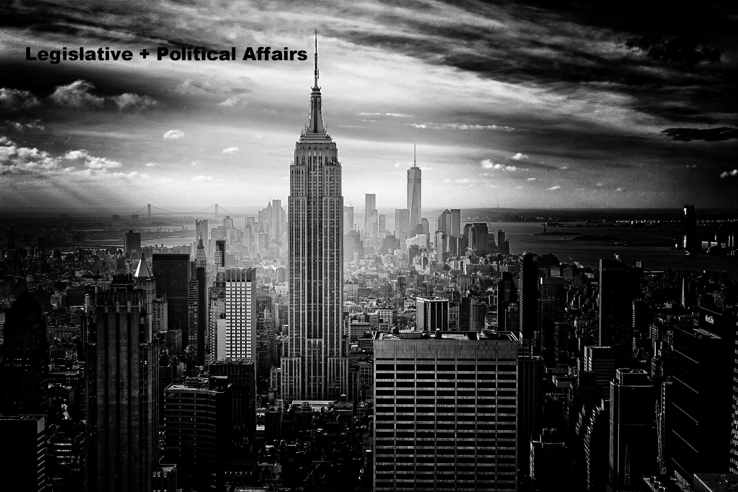 Legislative + Political Affairs
