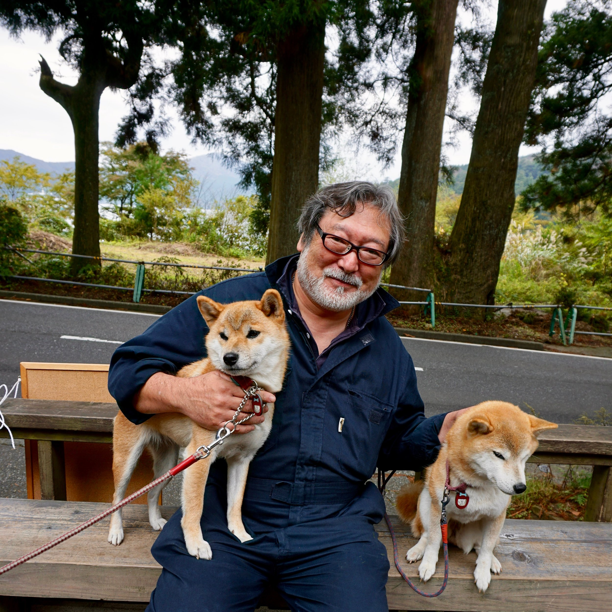 Amruta's Dogs