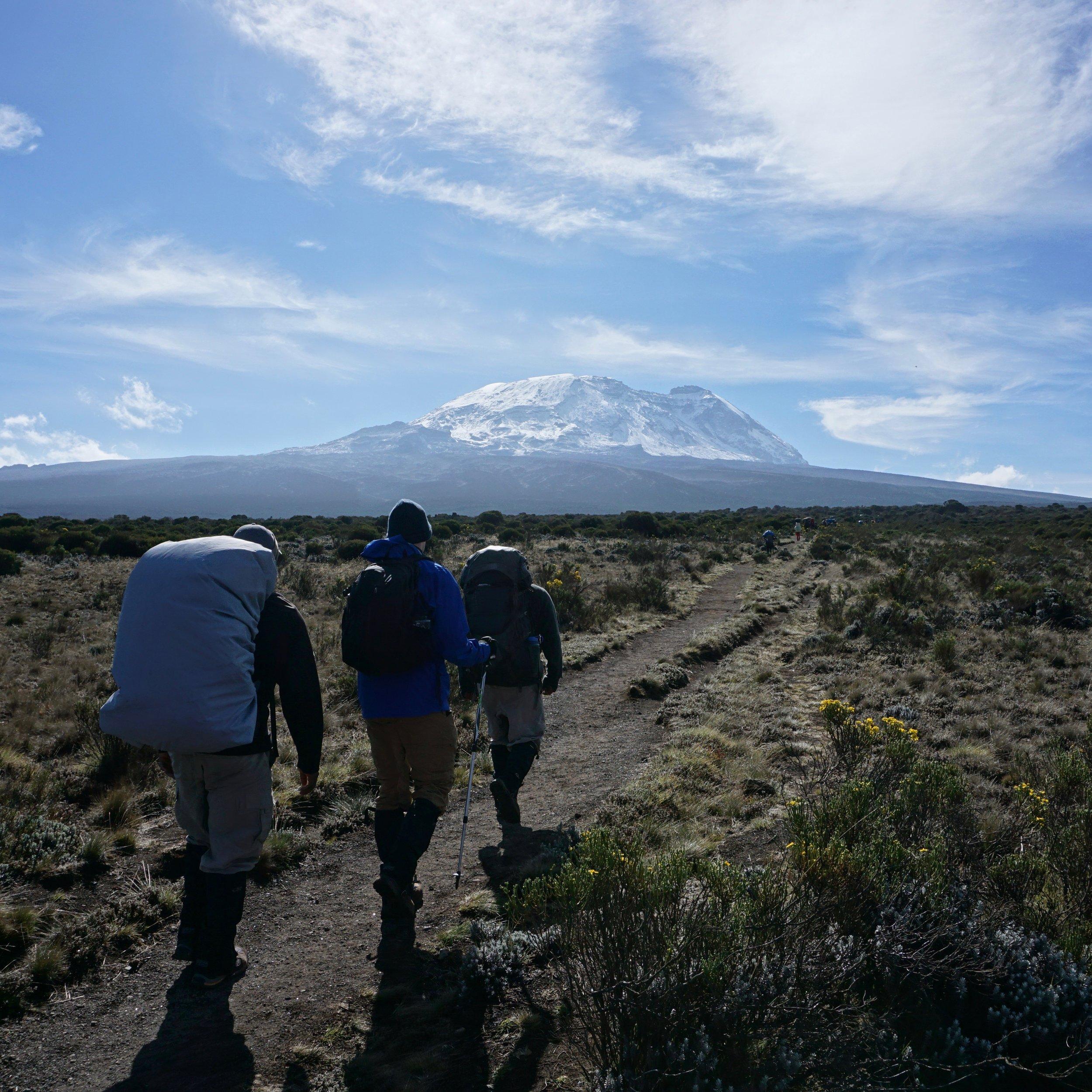 Kilimanjaro at 12,000 feet