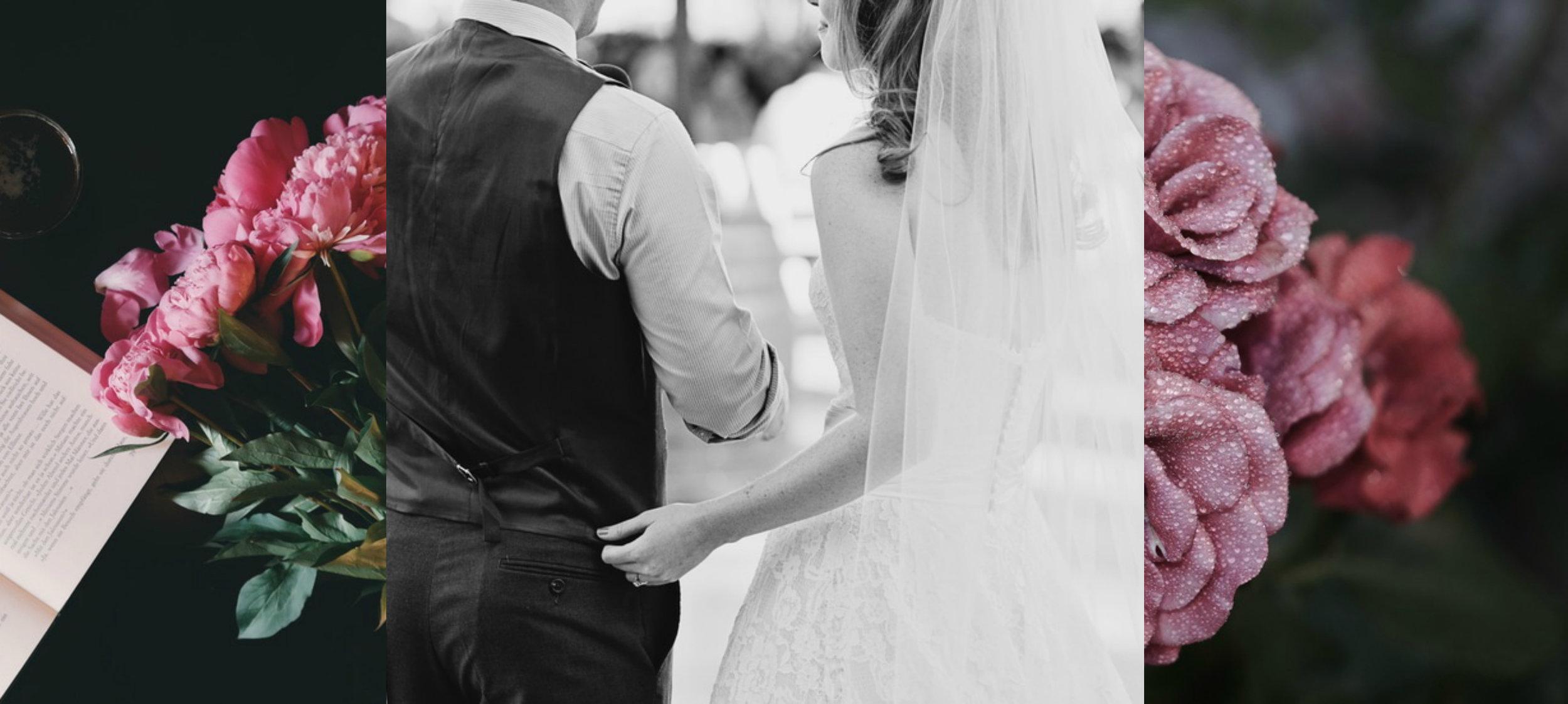 A Beautiful Blue Mountains wedding