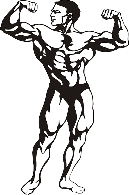 The pursuit of muscle used to be confined to bodybuilders. Nowadays gyms are awash with members looking for maximal 'gainz'.
