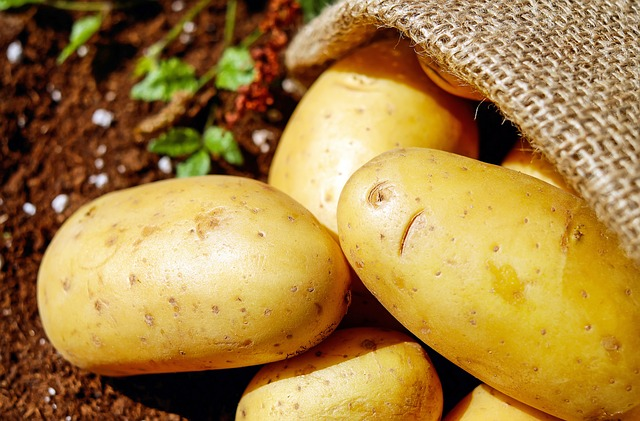Potatoes are a starchy carbohydrate