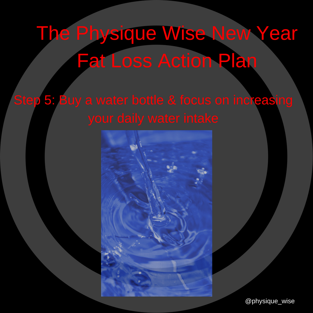 The Physique Wise New Year Fat Loss Action Plan-3.png