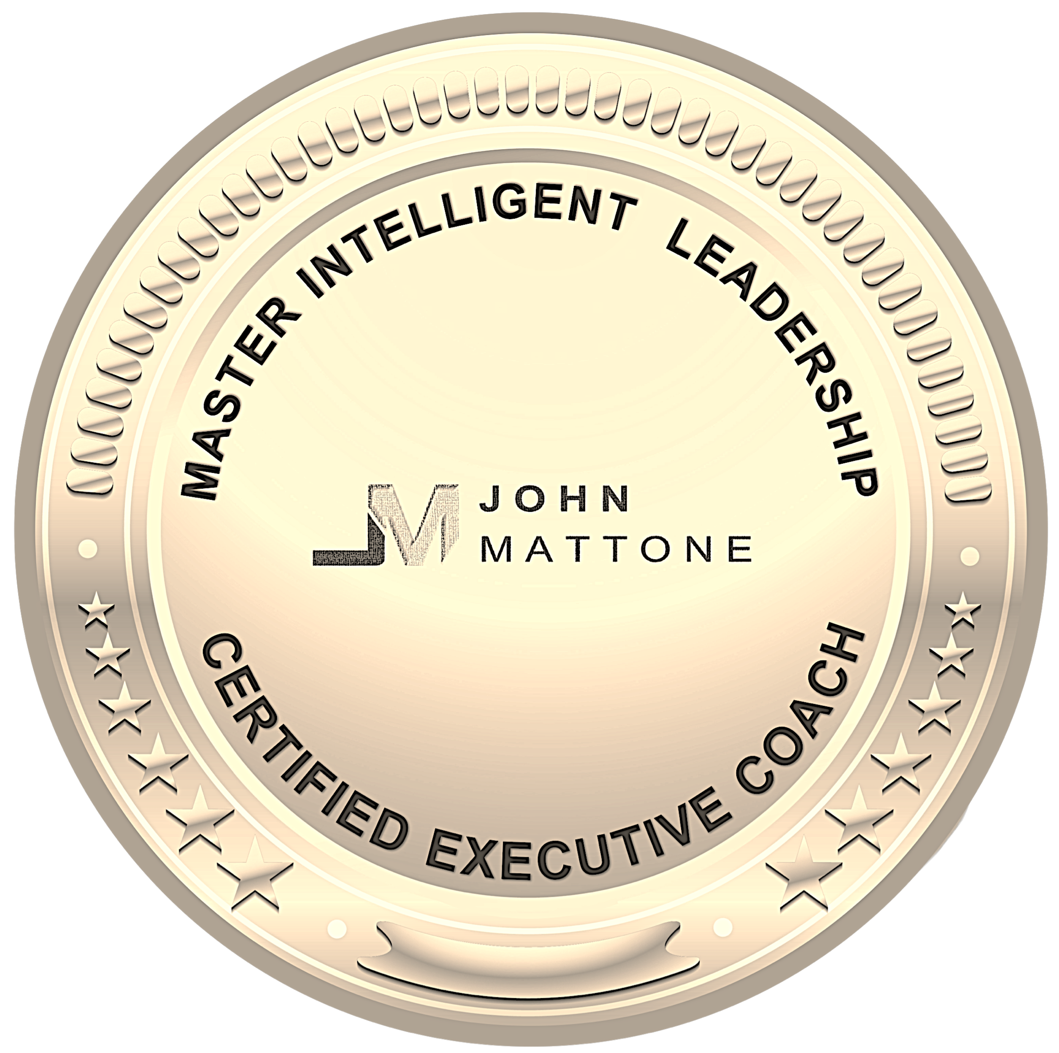 Nick Roud - #1 Master Certified Executive Coach on Intelligent Leadership in New Zealand.