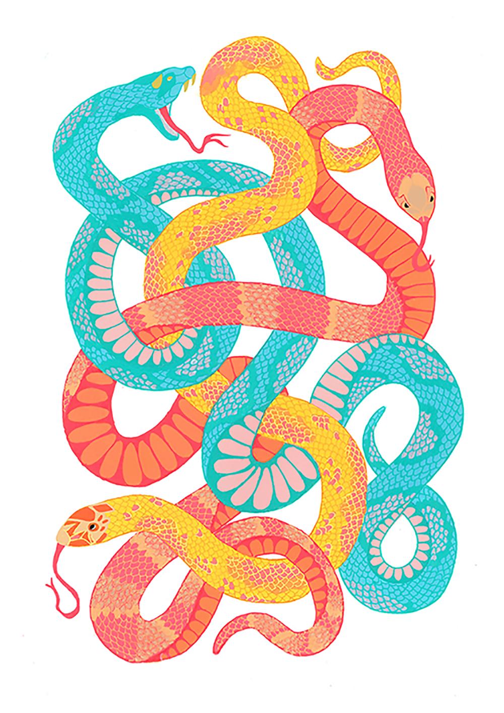 Snake1low.jpg