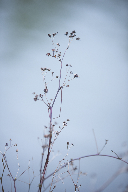 winter-wedding-blue-silver-inspiration-schloss-laudon-vienna-austria-barbara-wenz-photography (128).jpg