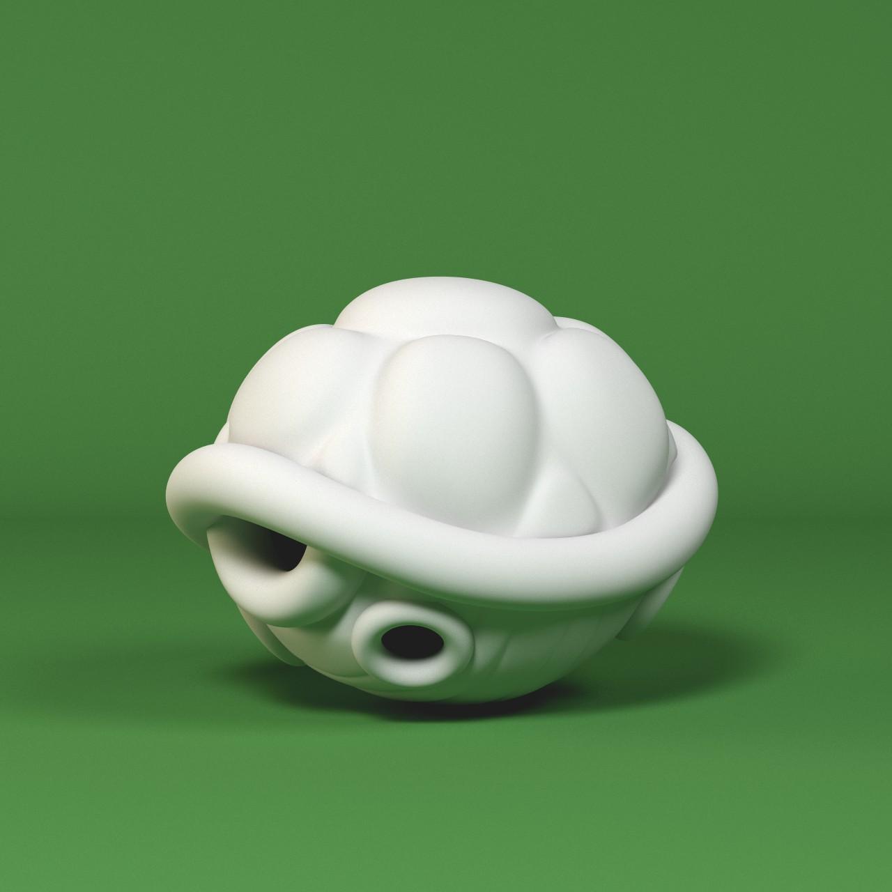 turtle_1_1.jpg