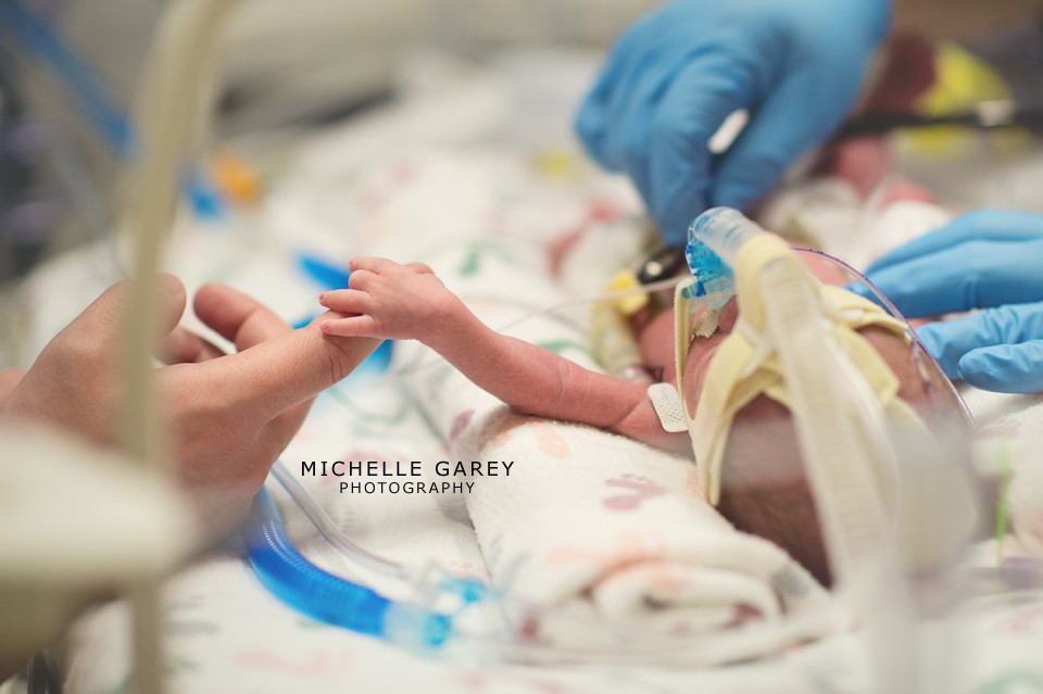 © 2013 Michelle Garey Photography