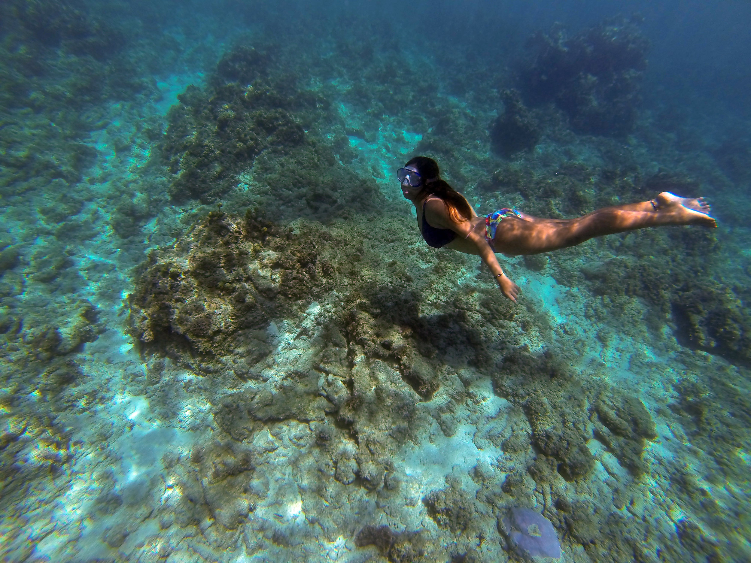 Underneath the clear blue waters of Dahican's sea are an assortment of reef and fine white sand.