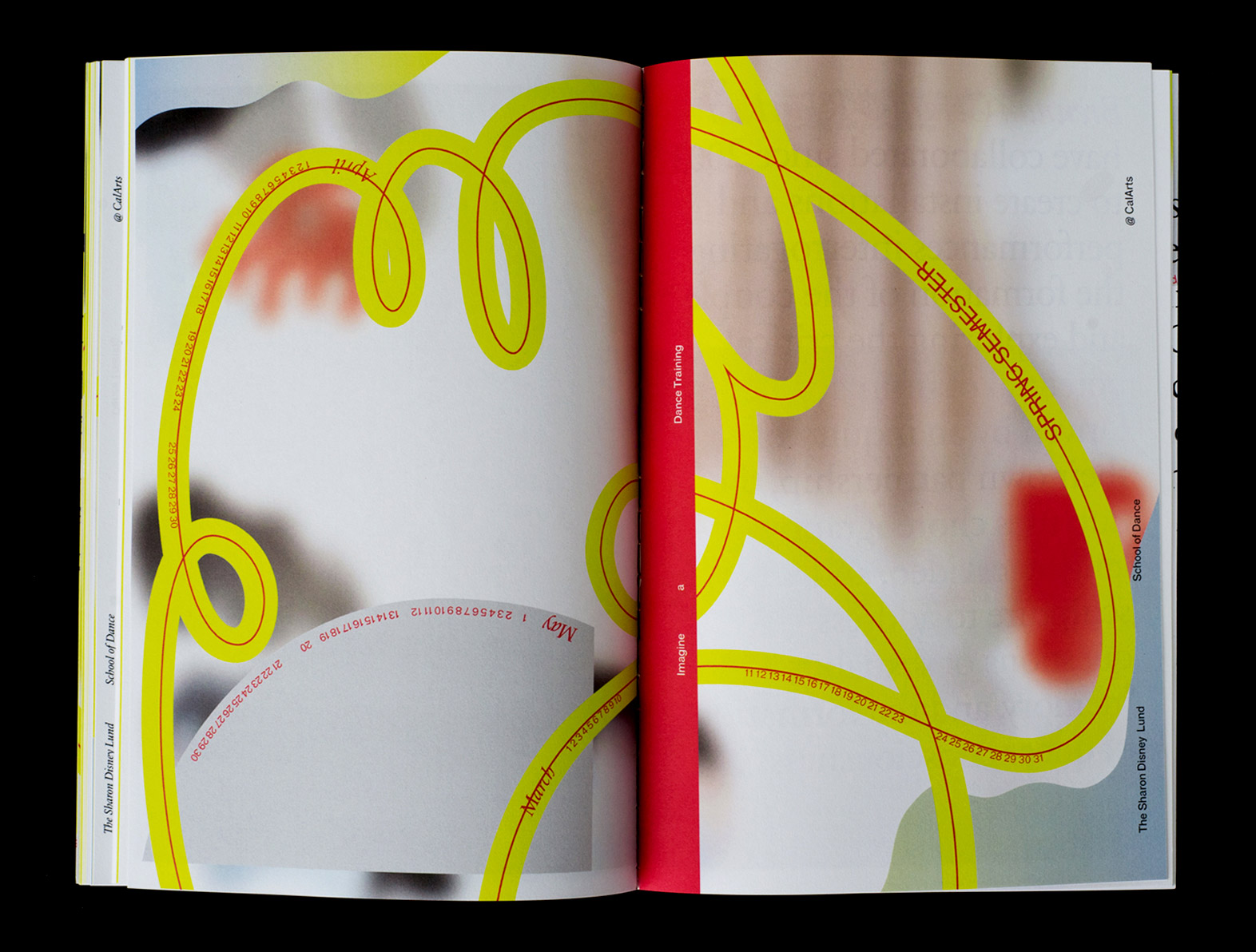 Dance_book_1.jpg