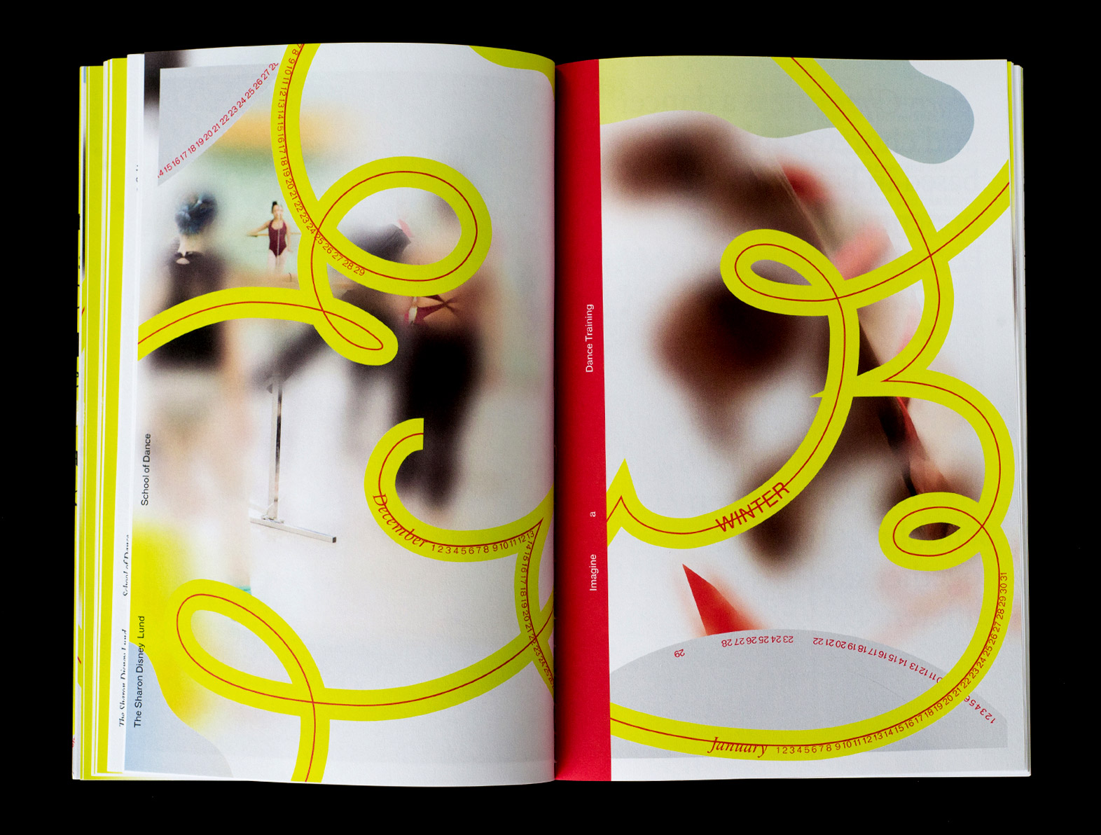 Dance_book_2.jpg