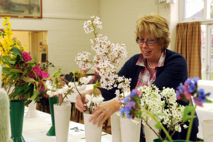 Fittleworth Horticultural Society Spring Show